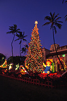 Christmas tree at Honolulu Hale, (City Hall) decorated with lights