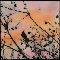 Mixed media encaustic photography in orange and pink with bird on branch with berries.