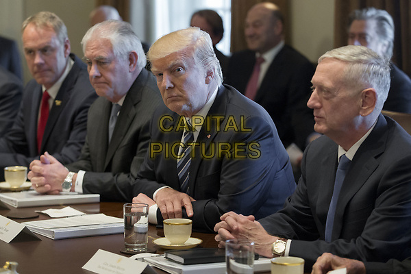 US President Donald J. Trump (C) holds a meeting with members of his Cabinet in the Cabinet Room of the White House in Washington, DC, USA, 13 March 2017. Also in the picture is Secretary of the Interior Ryan Zinke (L), Secretary of State Rex Tillerson (2-L) and Secretary of Defense Jim Mattis (R).<br /> CAP/MPI/RS<br /> &copy;RS/MPI/Capital Pictures