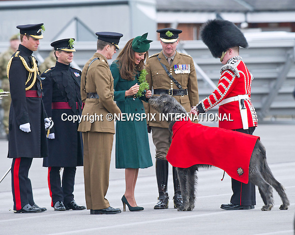 PRINCE WILLIAM AND CATHERINE,  DUCHESS OF CAMBRIDGE<br /> visited the 1st Battalion Irish Guards on St. Patrick's Day Parade at Mons Barracks, Aldershot. The Duchess of Cambridge presented the traditional sprigs of shamrocks to the Officers and Guardsmen of the Regiment. The Duke of Cambridge is Colonel of the Regiment_17/03/2014<br /> Mandatory Credit Photo: &copy;Dias/NEWSPIX INTERNATIONAL<br /> <br /> **ALL FEES PAYABLE TO: &quot;NEWSPIX INTERNATIONAL&quot;**<br /> <br /> IMMEDIATE CONFIRMATION OF USAGE REQUIRED:<br /> Newspix International, 31 Chinnery Hill, Bishop's Stortford, ENGLAND CM23 3PS<br /> Tel:+441279 324672  ; Fax: +441279656877<br /> Mobile:  07775681153<br /> e-mail: info@newspixinternational.co.uk