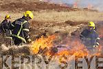 Cordal Gorse Fire