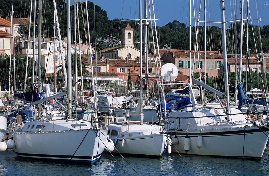 Europe/Provence-Alpes-Côte d'Azur/83/Var/Iles d'Hyères/Ile de Porquerolles: Le village et voiliers de plaisance au port