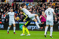 Olivier Girou of Arsenal and Federico Fernandez of Swansea City battle for the ball during  the English Premier League game between Arsenal and Swansea at the Liberty Stadium in Swansea ,Wales, UK. Saturday 14 January 2017