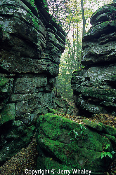 Rock Formations, Beartown State Park, West Virginia