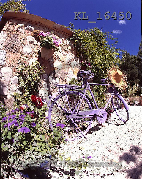 Interlitho, FLOWERS, BLUMEN, FLORES, photos+++++,bike, house,KL16450,#F#