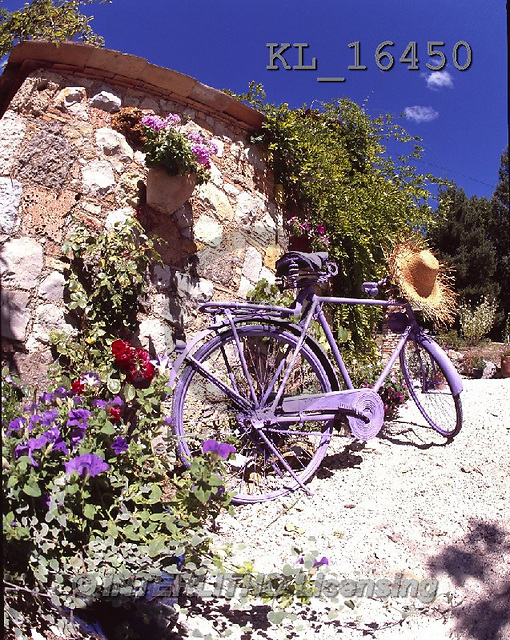 Interlitho, FLOWERS, BLUMEN, FLORES, photos+++++,bike, house,KL16450,#F#
