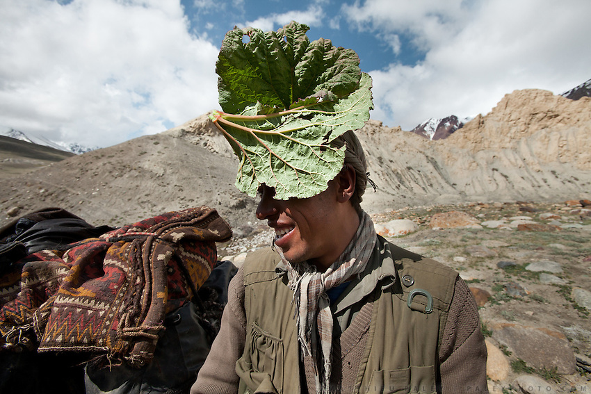 A Wakhi men uses a leaf of Rhubarb as hat to protect himself from the sun. Trekking up and along the Wakhan river, the only way to reach the high altitude Little Pamir plateau, home of the Afghan Kyrgyz community.