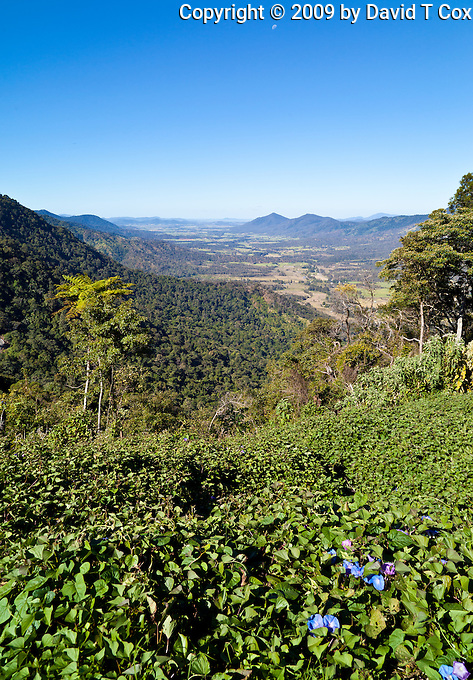 Eungella NP viewpoint, Queensland, Australia
