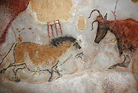 Europe/France/Aquitaine/24/Dordogne/Périgord Noir/Grotte de Lascaux/Lascaux II : Peintures rupestres [Non destiné à un usage publicitaire - Not intended for an advertising use] [Non destiné à un usage publicitaire - Not intended for an advertising use]