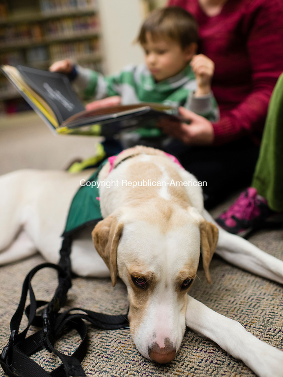 WOODBURY, CT- 5 January 2015-010516EC02-   Anton Samodelko, 5, reads a book to Maggie, a pet therapy dog at the Woodbury Public Library Tuesday night. Terri-Gayle Mazur brings Maggie to the library every month. They will visit again on February 2nd at 5pm. Erin Covey Republican-American