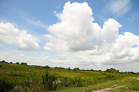 Clouds over the Everglades. Photographed at Arthur Marshall Loxahatchee Wildlife Refuge, Boynton Beach, Florida.