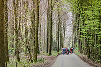 peloton in the forest<br /> <br /> 52nd Amstel Gold Race (1.UWT)<br /> 1 Day Race: Maastricht &rsaquo; Berg en Terblijt (264km)
