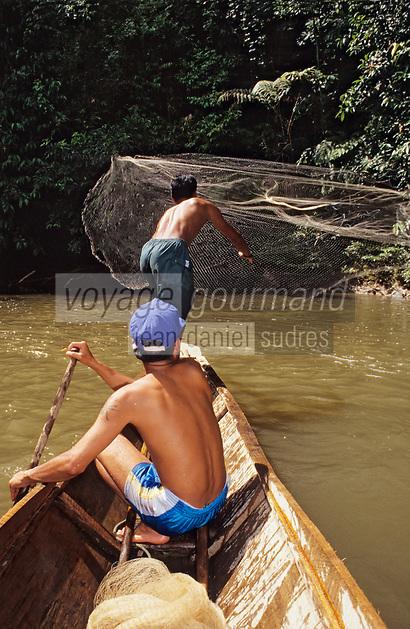Asie/Malaisie/Bornéo/Sarawak: Chez les Dayak -   pêche à l'épervier dans la mangrove
