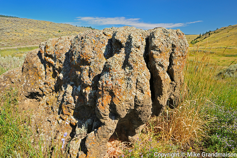 Rock in Grasslands. Thompson Valley, Kamloops, British Columbia, Canada