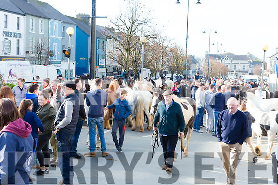 A packed Main Street at the Castleisland Horse Fair on Wednesday