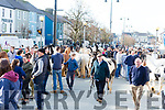 A packed Main Street at the Castleisland Horse Fair on Wednesday