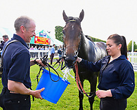 Stable lad and lass give water to Red Alert in the winners enclosure during Afternoon Racing at Salisbury Racecourse on 13th June 2017