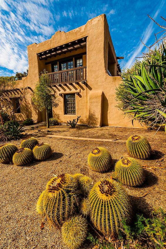 Cactus outside the Balboa Park Club, Balboa Park, San Diego, California USA.