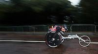 2013 ITU World Paratriathlon Championships