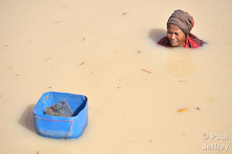 A woman is submerged up to her neck as she harvests fish in a pond that she is draining near Khnach, a village in the Kampot region of Cambodia.
