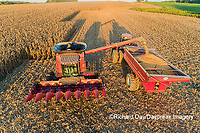 63801-12316 Harvesting corn and unloading into grain cart in fall-aerial  Marion Co. IL