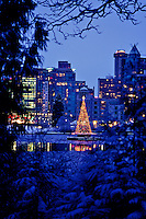 Christmas tree of lights in middle of Lost Lagoon with Vancouver skyline in background, taken from the forest in Stanley Park, Vancouver, BC.