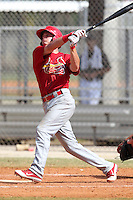 St. Louis Cardinals minor league player Ryan Jackson #12 hits a home run during a spring training game vs the Florida Marlins at the Roger Dean Sports Complex in Jupiter, Florida;  March 25, 2011.  Photo By Mike Janes/Four Seam Images