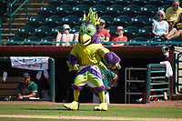 BirdZerk! entertains the crowd between innings of the South Atlantic League game between the Greensboro Grasshoppers and the Hickory Crawdads at L.P. Frans Stadium on May 26, 2019 in Hickory, North Carolina. The Crawdads defeated the Grasshoppers 10-8. (Brian Westerholt/Four Seam Images)