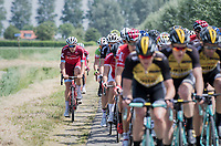 Team Katusha taking to the gravel path next to the road to move up the peloton<br /> <br /> Ster ZLM Tour (2.1)<br /> Stage 2: Tholen &gt; Hoogerheide (186.8km)