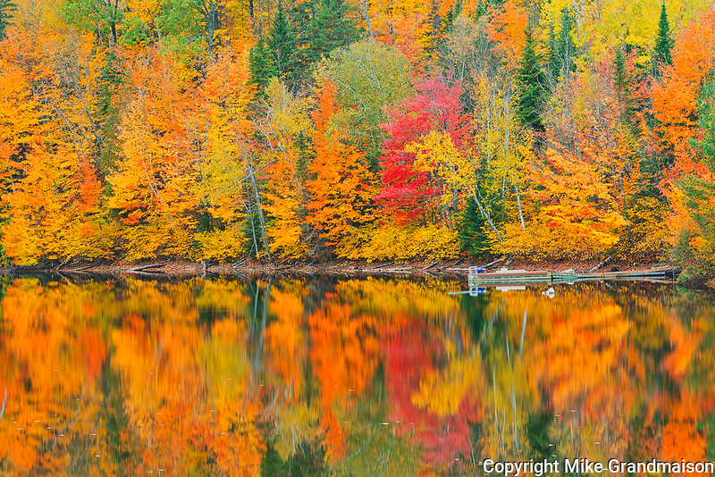 Autumn  colors reflected in Lac Trudel. Great Lakes - St.  Lawrence Forest Region.<br />