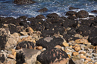 The rocky shore of Acadia National Park is pictured on Mount Desert Island in Maine Wednesday June 19, 2013. Created as Lafayette National Park in 1919 and renamed Acadia in 1929, the park includes mountains, an ocean shoreline, woodlands, and lakes.
