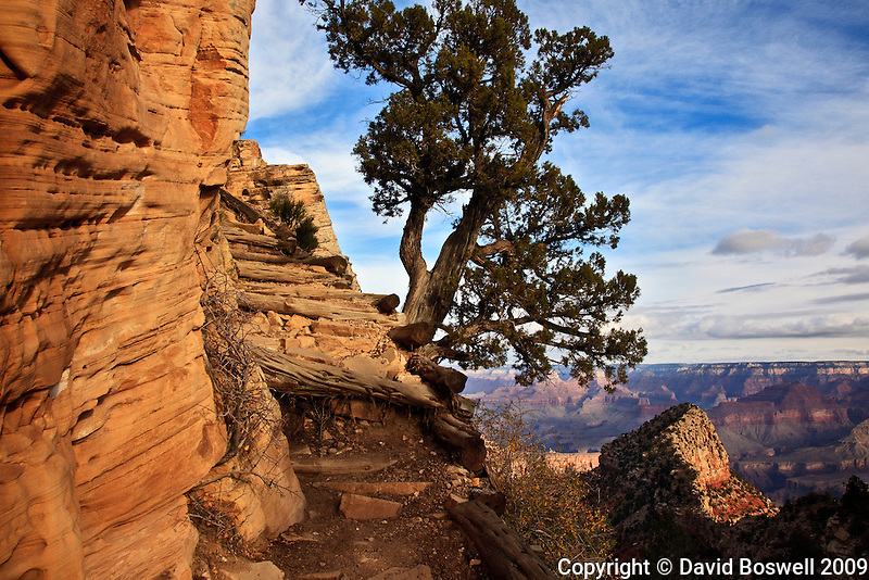 The Grandview Trail provides a steep, rugged 3 mile descent that drops 2500 ft. to Horseshoe Mesa, Grand Canyon National Park.