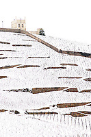 The Le Meal and Maison Blanche White House vineyard. The Hermitage vineyards on the hill behind the city Tain-l'Hermitage, on the steep sloping hill, stone terraced. Sometimes spelled Ermitage. Vineyards under snow in seasonably exceptional weather in April 2005. Tain l'Hermitage, Drome, Drôme, France, Europe