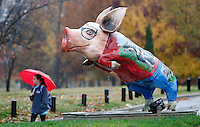 NWA Democrat-Gazette/DAVID GOTTSCHALK  Olivia Speed, a sophomore a the University of Arkansas, passes by Sooie Student by Jane Garrison Davidian Tuesday, November 17, 2015, on the campus in Fayetteville. The large hog sculpture is part of Pigshibition a fundraising effort for the Ozark Literacy Council.