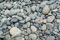 Pebbles on Sandy Bay, Macquarie Island, Antarctica