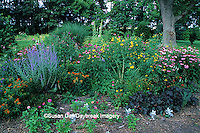 63821-04220 Perennial butterfly hummingbird garden    IL