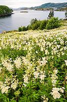 Norway, Sør-Trøndelag, Stokksund. View from Lian to Stokkøy.