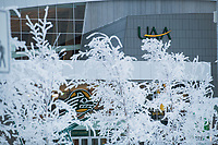 UAA's Alaska Airlines Center, through hoarfrost-encrusted trees.