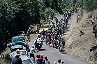 peloton up the Montée de Naves d'Aubrac (Cat1/1058m/8.9km/6.4%)<br /> <br /> 104th Tour de France 2017<br /> Stage 15 - Laissac-Sévérac l'Église › Le Puy-en-Velay (189km)