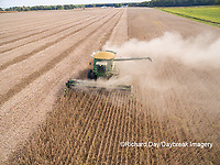 63801-09204 Soybean Harvest, John Deere combine harvesting soybeans - aerial - Marion Co. IL