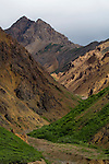 Polychrome Mountain, Denali National Park, Alaska..