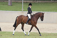 Champion Lady Rider
