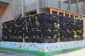 Woolly Pocket vertical garden hangers at the Downtown Value School, a charter school in downtown Los Angeles and is part of their Woolly School Garden program. The Woolly Pocket hangers are created from 100% recycled materials. The school uses gardens to teach students gardening and also has a flower and produce garden that goes around the school grounds, a small greenhouse and a worm compost bin that students collect for after each meal. Los Angeles, California, USA