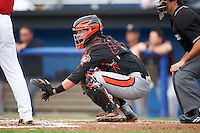Aberdeen Ironbirds catcher Stuart Levy (40) during a game against the Batavia Muckdogs on July 16, 2016 at Dwyer Stadium in Batavia, New York.  Aberdeen defeated Batavia 9-0. (Mike Janes/Four Seam Images)
