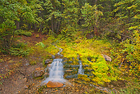 Creek and small waterfall along the Bow Valley Trail<br />Banff National Park<br />Alberta<br />Canada