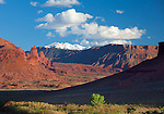 Grand County, UT<br /> Hillside above the Colorado River with Fisher Towers and La Sal Mountains in the distance in afternoon light.