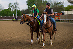 LOUISVILLE, KY - MAY 02: Hofburg at Churchill Downs on May 2, 2018 in Louisville, Kentucky. (Photo by Alex Evers/Eclipse Sportswire/Getty Images)
