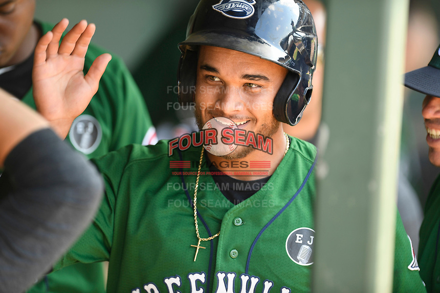 Third baseman Brandon Howlett (35) of the Greenville Drive is greeted after scoring a run in a game against the West Virginia Power on Sunday, May 19, 2019, at Fluor Field at the West End in Greenville, South Carolina. Greenville won, 8-4. (Tom Priddy/Four Seam Images)