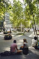 - USA, New York, internal garden of IBM building<br /> <br /> - USA, New York, giardino interno del palazzo IBM