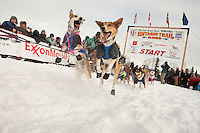 Tom Thurston's dogs eagerly pull in the chute during the restart day of Iditarod 2009 in Willow, Alaska